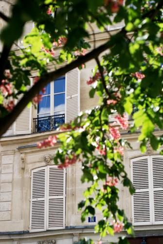 Paris Spring